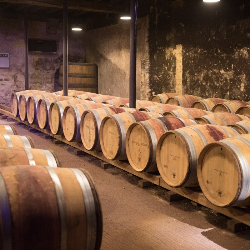 Beaujolais cellar